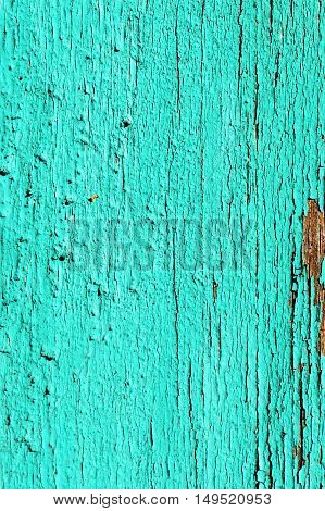 The surface of old painted boards. Harsh application of paint, cracked surface. Light green color. Turquoise.