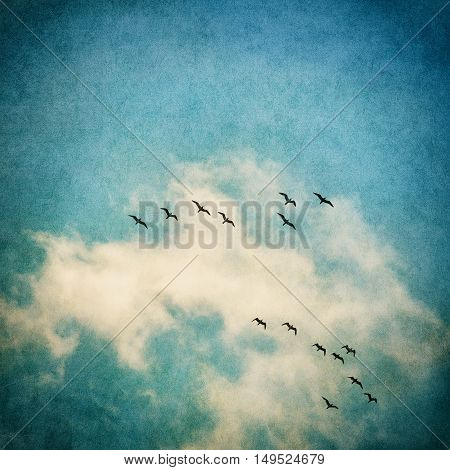 A vintage rendition of flying seagulls and clouds with a textured paper background. Image displays a strong texture and grain pattern.