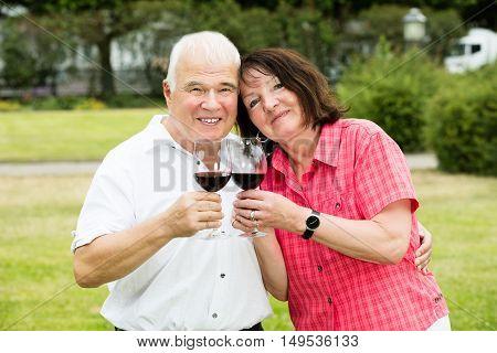 Close-up Of Smiling Senior Couple Holding Glass Of Wine