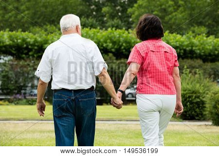 Rear View Of Senior Couple Walking In Park Holding Hands