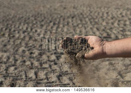 Hand holding a pile of soil above the ground. Hand with soil