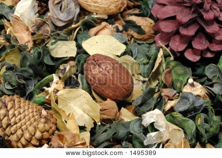 Dried Leaves - Potpourri