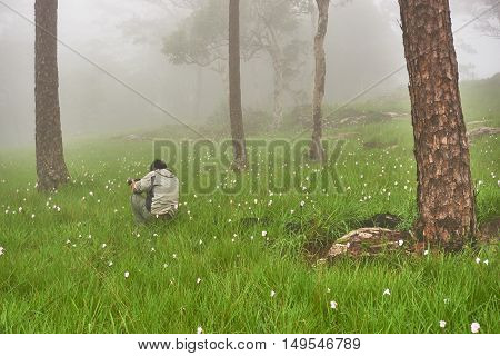 A young man try to take photo of the wild flower field in the morning fog.