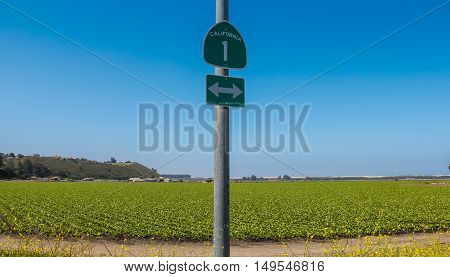 California Route 1 sign with green agriculture field in the background.