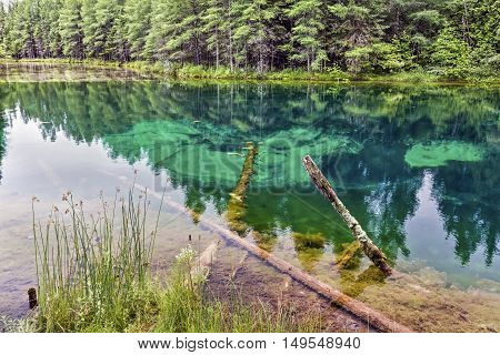The beautiful freshwater spring called