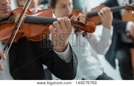 Classical music symphony orchestra string section performing male violinist playing on foreground music and teamwork concept