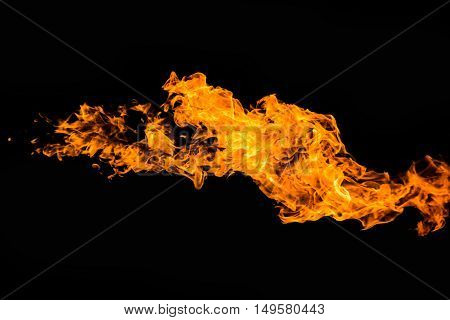 Blaze of flame burning on black background