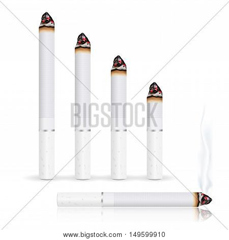 Burning cigarette. Stages of burning. Vector illustration isolated on white background