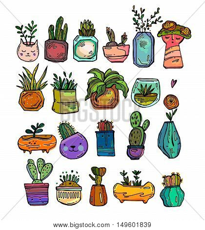 Vector collection of bright colored cactus and plants in hand drawn style. Green plant flower and nature floral and exotic wild botany tropical illustration