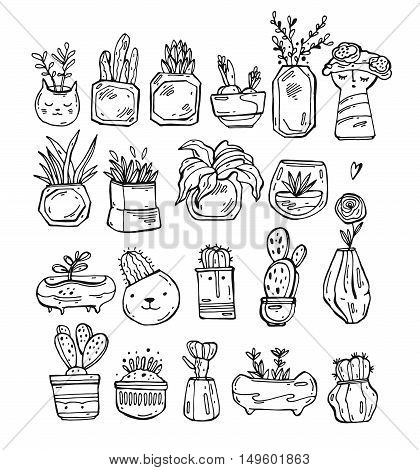 Vector collection of line cactus and plants in hand drawn style. Green plant flower and nature floral and exotic wild botany tropical illustration.
