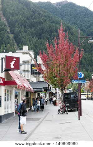 Queenstown New Zealand - March 2016: Maple tree on the street of business district of Queenstown south island of New Zealand