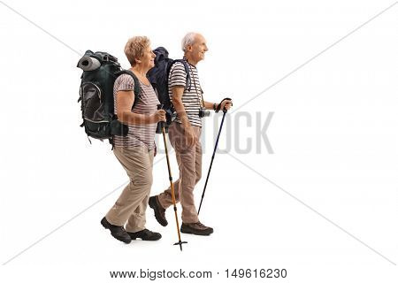 Full length profile shot of elderly hikers walking isolated on white background