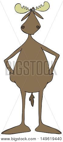Illustration of a bull moose with his hands in pockets built in to his skin.
