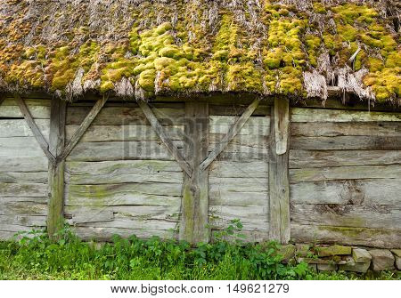 Old wooden shed with moss-grown straw-thatched roof. Old traditional Ukrainian architecture.