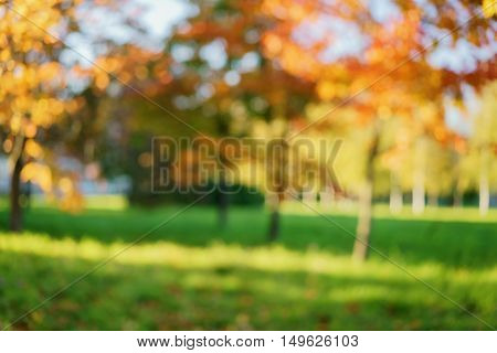 autumnal blurred bokeh background of color trees in a park, real lens blur