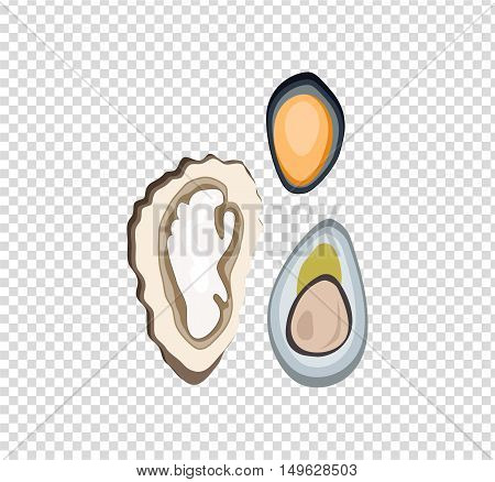 Oysters variations vector illustration concept flat design
