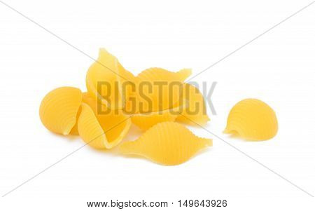 Pasta dry shells isolated with white background
