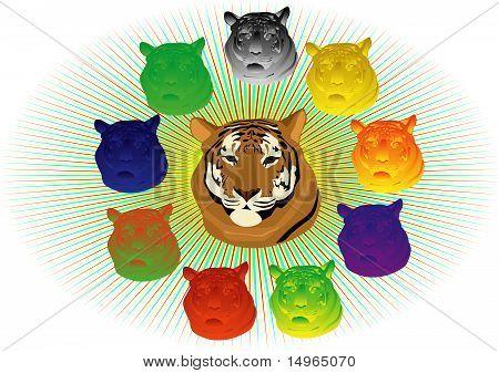 Bunte Tiger