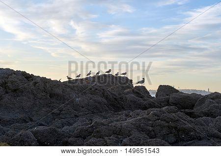 Landscapes of sunset in Sta. Cruz, La Coruna, Spain