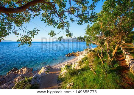Amazing Rocky Beach With Crystalic Clean Sea Water With Pine Trees On The Coast Of Adriatic Sea, Ist