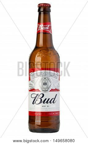 Bottle Of Budweiser Beer On A White Background