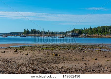 A New England harbor at low tide in the morning leaving a muddy rocky beach leading to boats anchored in clean blue waters with green trees in the background