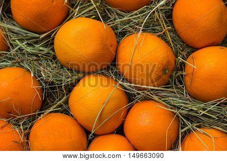 Fresh mandarin oranges texture on hay background