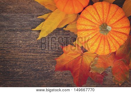 one orange pumpkin with maple fall leaves on wooden textured table, retro toned