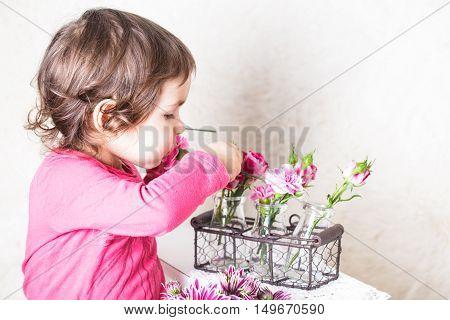 Rose Smell