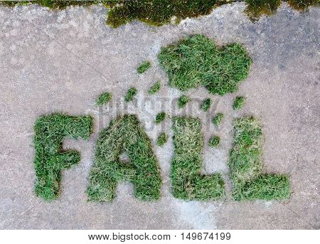 Word FALL made of dried green grass with cloud and raindrops on grey stone background. Rainy weather at autumn.