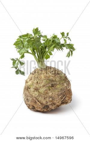 Fresh celery root and leaves