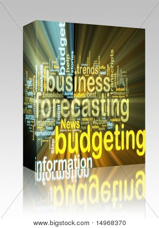 Software package box Word cloud tags concept illustration of financial budgeting glowing light effect