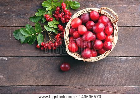 Plums in a basket and rowanberry on a wooden background