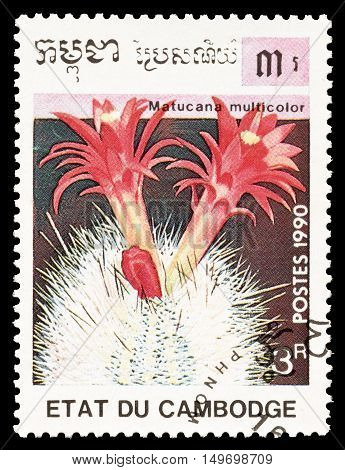 CAMBODIA - CIRCA 1990 : Cancelled postage stamp printed by Cambodia, that shows Matucana Multicolor cactus.