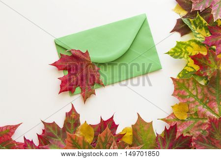 Green envelop and colourful autumn leaves frame on white background. Close up. Autumn concept.