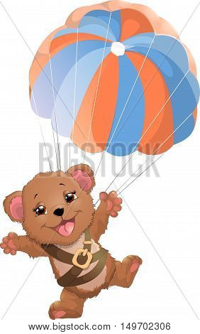 beautiful bear with a parachute on a white background