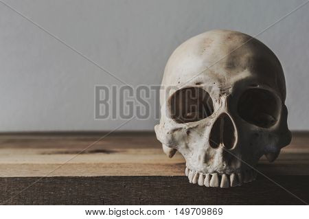 Still life with human skull on wood table