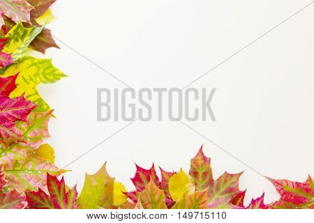 Colorful autumn fall leaves border on white background. Autumn concept. Copy space for text