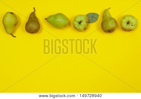 Pears and quince in row on yellow background with copy space