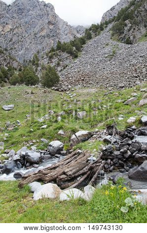 Old wooden log bridge thrown over a rapid mountain river