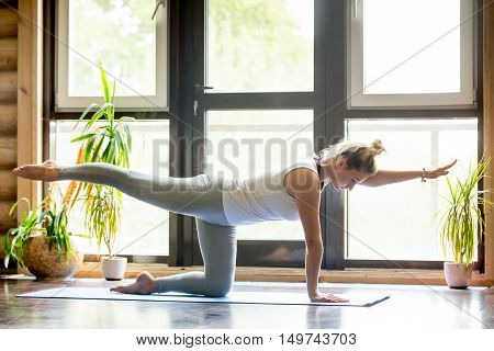 Full length portrait of beautiful young woman working out at home in living room, doing yoga or pilates exercise on mat. Bird-dog or kneeling opposite arm and leg extension chakravakasana . Side view