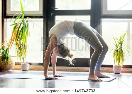 Full length portrait of beautiful young woman working out at home in living room, doing yoga or pilates exercise on mat. Bridge Pose, Urdhva Dhanurasana Upward Bow , Chakrasana Wheel . Side view