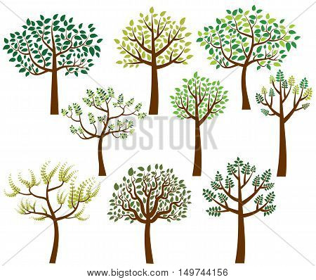 Set of stylized vector trees with green leaves