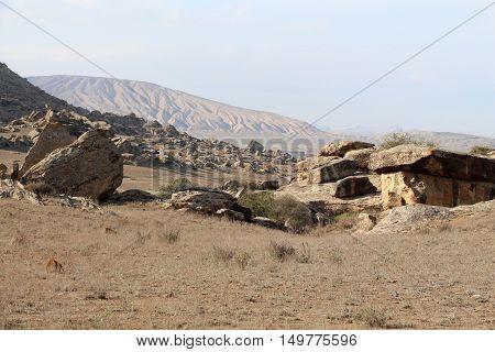 Desert Landscape. Among the rocky hill of dunes