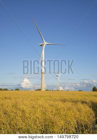 TALLINN, ESTONIA - AUGUST 01, 2015: Two wind electric generators on the summer field. Tourist landmark of the Estonia.