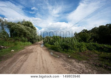 sandy dirt road with puddles of water after the rain