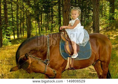 Image little girl riding a horse in the forest