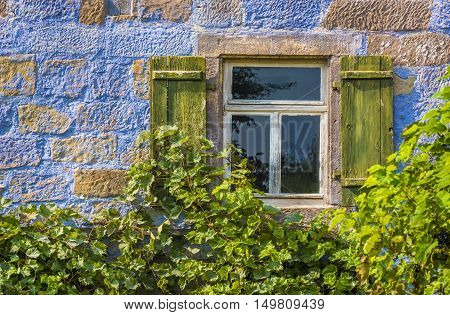 Blue house wall with window and vines - Architectural close up over a traditional german house painted in blue and half covered with vines