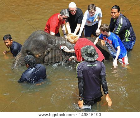 Elephant And Tourists In National Conservation Centre Kuala Gandah