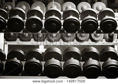 Ready to be used. Small black heavy dumbbells lying in several rows in a gym